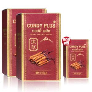 cordyPlus1ถั่งเช่าทิเบต 2 แถม 1 2140